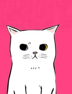 猫动漫图片大全