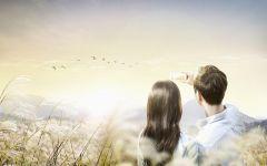 两个人浪漫爱情背景图片