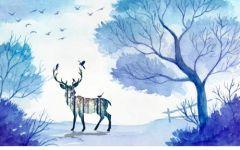 森林鹿唯美动漫图片