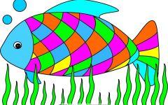 鱼的简笔画彩色