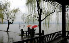 伤感雨中美景图片