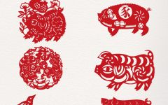 中国风手抄报猪