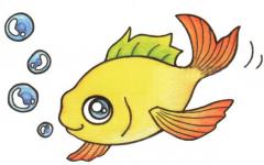 儿童画鲤鱼简单