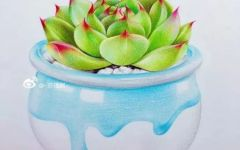 彩铅画多肉植物