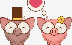 情侣小猪图片卡通图片