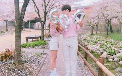 唯美樱花情侣图片