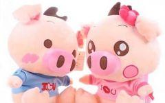 猪猪情侣图片大全可爱