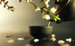 禅茶图片唯美