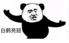 熊猫表情组图