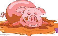猪的可爱卡通图片