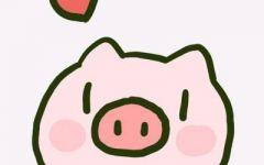 猪情侣图片