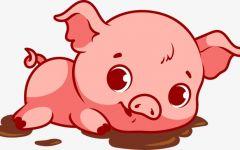 卡通猪图片可爱