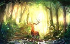 动漫森林鹿唯美图片