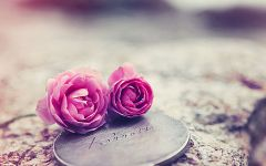 浪漫图片唯美花