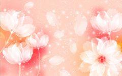 浪漫的花图片