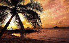 海边浪漫风景图