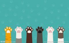 猫爪图片卡通