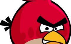 卡通胖鸟图片