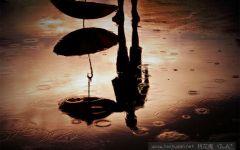 雨伞高清图伤感