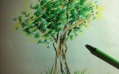 绘画小树图片