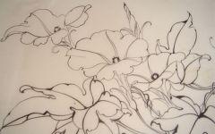 5年级植物绘画