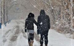 情侣下雪天图片