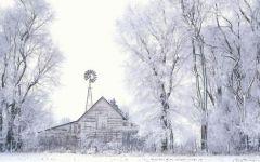 雪景两个人浪漫图片
