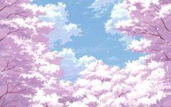 唯美图片樱花