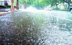 大雨唯美图片