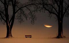 孤独唯美伤感图片