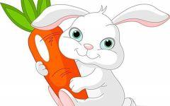 小兔子图片可爱