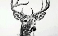 2头鹿唯美图片