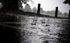 雨的图片唯美