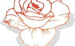 玫瑰花动漫图