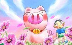 年猪的动漫图片