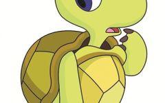 动漫小乌龟图片