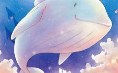 鲸动漫图片优美