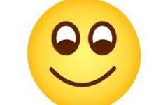 微笑的表情图