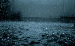 唯美下雨图