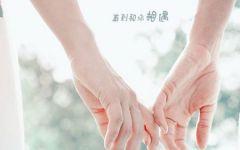 情侣牵手的手照片