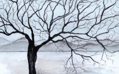 小树画画图片