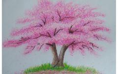彩铅画树图片