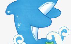 小海豚动漫图画