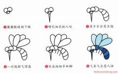 简单画的蚊子