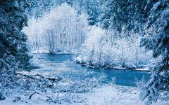 雪景实拍唯美图