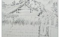 线描树林插画