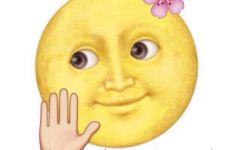 emoji月亮表情图片