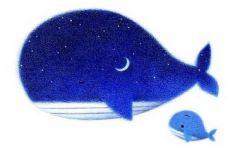 鲸鱼的唯美图片