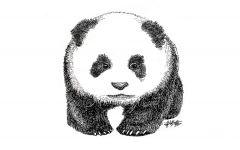 熊猫手绘画
