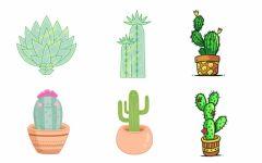 卡通手绘创意花卉多肉植物盆景